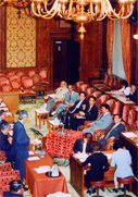 2003年7月1日「衆議院イラク人道復興支援並びに国際テロリズムの防止及びわが国の協力支援活動等に関する特別委員会」参考人